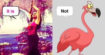 It's Flamenco, not Flamingo!