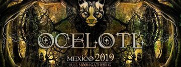 Ocelotl 2019 - Full Moon Gathering
